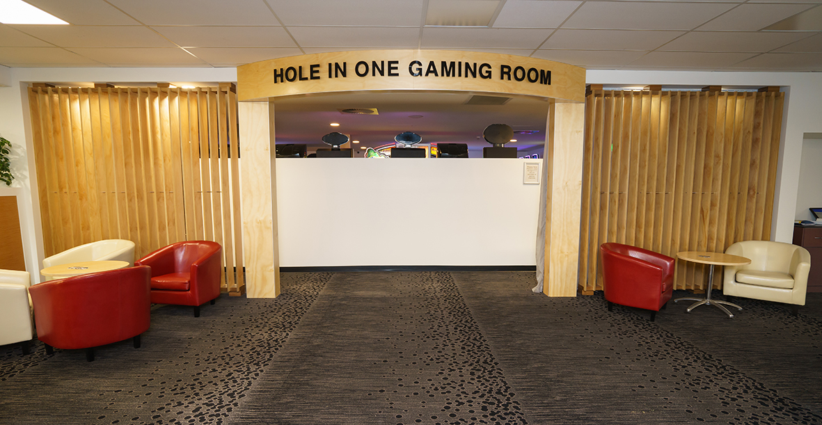 Pic 18 Gaming Room